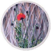 Poppy In The Wild Round Beach Towel