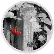 Porch Post Berries Color Punch Round Beach Towel