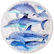 Porpoise Play Round Beach Towel by Carey Chen