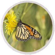 Portrait Of A Monarch Round Beach Towel