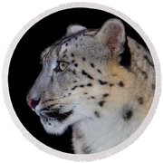 Portrait Of A Snow Leopard Round Beach Towel
