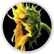 Portrait Of A Sunflower Round Beach Towel