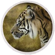 Portrait Of A Tiger  Round Beach Towel