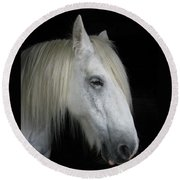 Portrait Of A White Horse Round Beach Towel