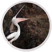 Portrait Of An Australian Pelican Round Beach Towel