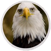 Portrait Of An Eagle Round Beach Towel