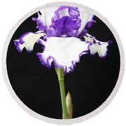 Portrait Of An Iris Round Beach Towel