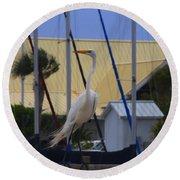 Posing Egret Round Beach Towel