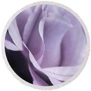 Posing Purple Rose Flower Round Beach Towel