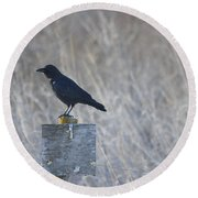 Posted Crow Round Beach Towel