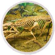 Postosuchus Fossil Round Beach Towel