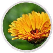 Pot Of Gold Marigold Round Beach Towel