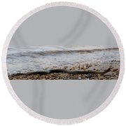 Potomac Water Snake Round Beach Towel