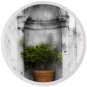 Potted Plant At Villa D'este Near Rome Italy Round Beach Towel