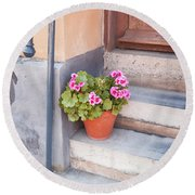 Potted Plant Front Of House Round Beach Towel