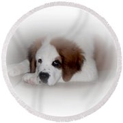 Pouting Pup Round Beach Towel