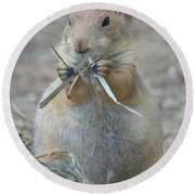 Prairie Dog Food Round Beach Towel