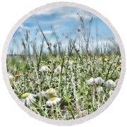 Prairie Flowers And Grasses Round Beach Towel