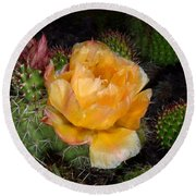 Prairie Rose II Round Beach Towel