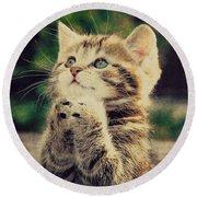 Praying Cat Round Beach Towel