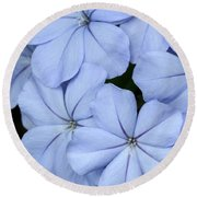 Prettiest Plumbago Round Beach Towel