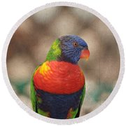 Pretty Bird - Rainbow Lorikeet Round Beach Towel