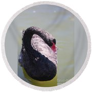 Pretty Black Swan 2 Round Beach Towel