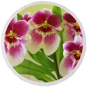 Pretty Faces - Orchid Round Beach Towel