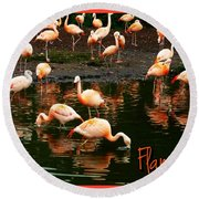 Pretty Flamingos Round Beach Towel