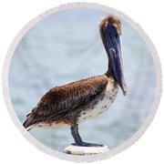 Pretty Gulf Pelican Round Beach Towel
