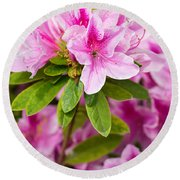 Pretty In Pink - Spring Flowers In Bloom. Round Beach Towel