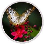 Pretty Little Butterfly  Round Beach Towel