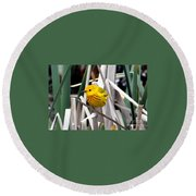 Pretty Little Yellow Warbler Round Beach Towel