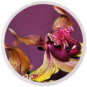 Pretty Orchid On Pink Round Beach Towel