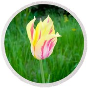Pretty Pastel Tulip Round Beach Towel