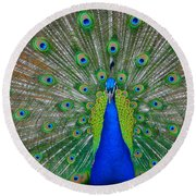 Pretty Peacock Round Beach Towel