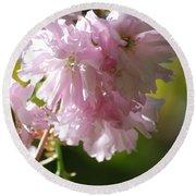 Pretty Pink Cherry Blossoms Round Beach Towel