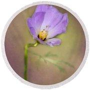 Pretty Purple Flower Round Beach Towel