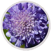 Pretty Purple Flower Round Beach Towel