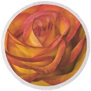 Pretty Rose Round Beach Towel