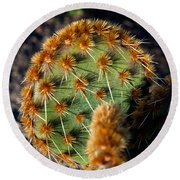 Prickly Cactus Leaf Green Brown Plant Fine Art Photography Print  Round Beach Towel