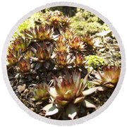 Prickly Lilies Round Beach Towel