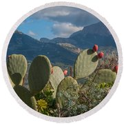 Prickly Pear Cactus And Mountains Round Beach Towel