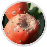 Prickly Pear Cactus Fruit - Indian Fig Round Beach Towel