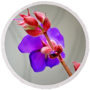 Princess Flower Blooms Round Beach Towel