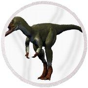 Proceratosaurus Dinosaur Round Beach Towel