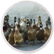 Professional Ducks 2 Round Beach Towel