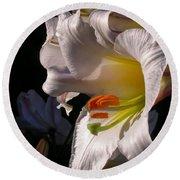 Profile Lilium Regale Round Beach Towel