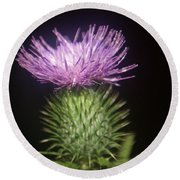 Profile Of Pruple Thistle Round Beach Towel