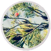 Protea Repens Maui Hawaii Sugarbush Round Beach Towel
